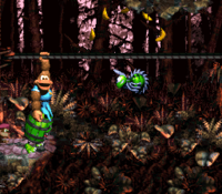 DKC3 Screenshot Strick-Trick