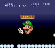 Luigi the lost levels bonus