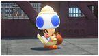 Toad l'astuce