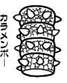 Karamenbō - SML2 (KC Deluxe - n°19)