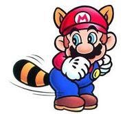 Mario mapache