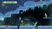 New-super-mario-bros-wii-ice-level-screenshot-1-