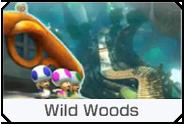 Wild Woods Icon