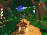 DK-Dschungel