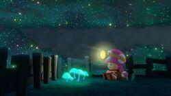 CTTT Screenshot Mitternacht im Wandelwald