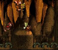 DKC Screenshot Reptilien-Rabatz