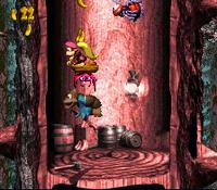 DKC3 Screenshot Springende Spinnen