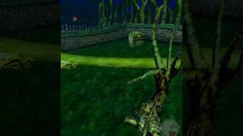 Mario Kart DS Unused Camera sequence in Luigi's Mansion