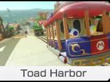 Puerto Toad