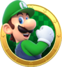 Art Luigi Star Rush