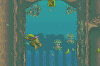 DKC3 Screenshot Sunken Spruce