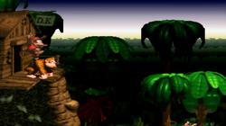 DKC Screenshot Dschungel-Fieber (Levelanfang)