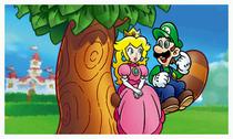 SM3DL-ImagePeach&Luigi