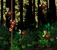 DKC Screenshot Wahnsinns-Wald