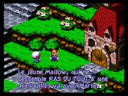 SMRPG-Mallow&Mario3