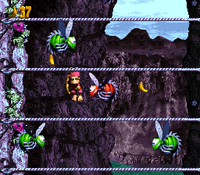 DKC3 Screenshot Ropey Rumpus