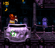 DKC3 Screenshot Alligator-Attentat 3