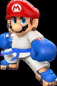 M&ST Mario