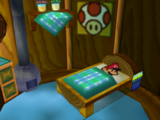Toad House (Paper Mario series)