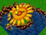 Coin Shower Flower