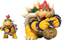 Bowser et Jr Switch 1