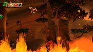 DKCTF Screenshot 3-4 Feuerwasserlimbo (Nähe N)