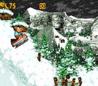 DKC3 Screenshot Jodel-Rodel