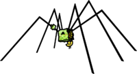 Mimi Spider transparent