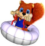 DKR Artwork Conker