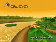 Jungle DK - MKWii