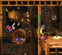 DKC3 Screenshot Allerlei Geschrei