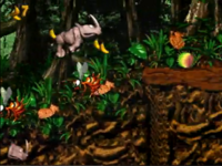 DKC2 Screenshot Tierische Show
