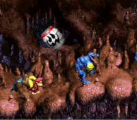 DKC3 Screenshot Höhlen-Holerö