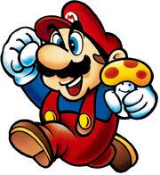 Mario and mushroom SMB1 artwork