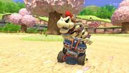 Animal Crossing - MK8 (printemps) 5