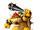 Bowser MSS.jpg