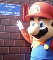 Mario rue