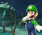 MKT Sprite DS Luigi's Mansion R 2