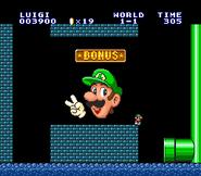 SMAS SMB - Luigi
