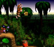 Jungle Hijinxs - Letter O - Donkey Kong Country