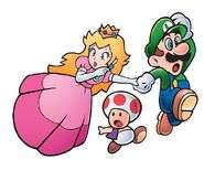 SMB3 Artwork Luigi, Peach & Toad