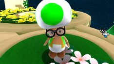 Vert1