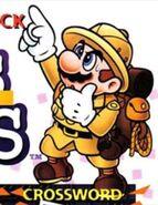 Mario's picross tenue exp.