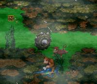 DKC Screenshot Reiher Weiher