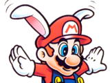 Mario lapin
