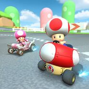 MKT Toad and Toadette 2