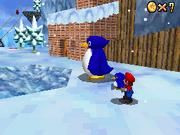 Li'l Penguin Lost