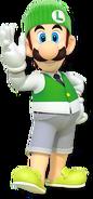 Luigi (New 3ds verison)