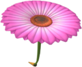 MKT Aile fleurie rose