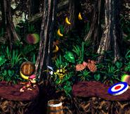 DKC2 Screenshot Dschungelzauber 6